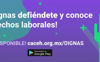 Conoce Dignas, la app asistente para trabajadoras del hogar